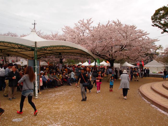 岩倉桜まつり2015
